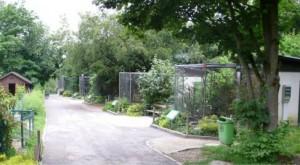 Der Linzer Zoo