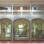 Das Affenhaus im Tiergarten Schönbrunn. Foto: Zoo Wien