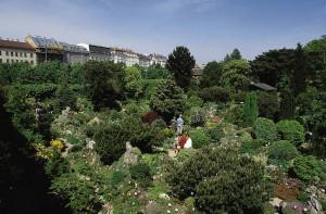 Der Belvedere Alpengarten ist der älteste Alpengarten Europas und wurde 1803 durch Erzherzog Johann gegründet. Seit 1865 befindet er sich im Oberen Belvedere - Eingang vom Vorpark aus. Foto: Michalski