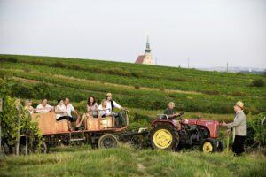 Das Weinviertel - gesellige Menschen gepaart mit einer wunderbaren Landschaft. Foto: manfredhorvath.at