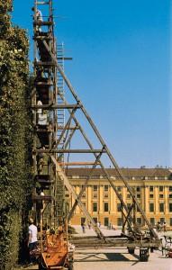 Die Alleen und Hecken Schönbrunns sind weltweit für ihren exakten Schnitt bekannt. Diese Schnittqualität wird durch den jährlichen Schnitt (Juni - Oktober) gewährleistet. Foto: Michalski