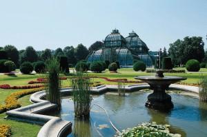 Das Palmenhaus Schönbrunn wurde von F. Segenschmid entworfen und 1882 von Kaiser Franz Joseph eröffnet. Es ist das größte des Kontinents und zählt baulich zu den schönsten seiner Art. Foto: BMLFUW