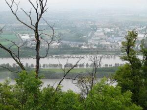 Weite Teile der Aulandschaft sind bereits überflutet. Doch genau dafür wurde die Neue Donau dereinst konzipiert, um Wien vor Hochwasser zu schützen. Foto: oepb