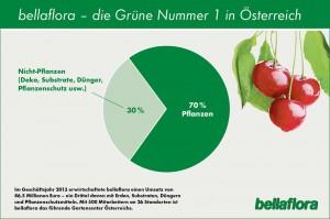 Bellaflora Geschäftsjahr 2013. Grafik: bellaflora