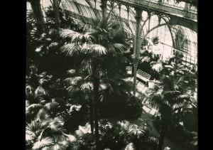 Ein historischer Innenleben-Blick. Foto: SKB