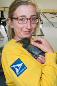 Ziehmutter Anne-Gabriela Schmalstieg mit einem der Küken. Foto: Daniel Zupanc