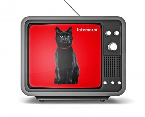 """""""Alles spricht für Internorm"""" – In einer neuen TV-Kampagne bringt Europas führende Fenstermarke ihr Leistungs- und Qualitätsversprechen geballt auf den Punkt. Foto: Internorm"""