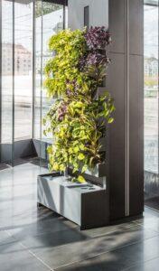 ... setzt bellaflora / Die Grüne Nummer 1 verstärkt auf den Innenraum. Beide Fotos: bellaflora
