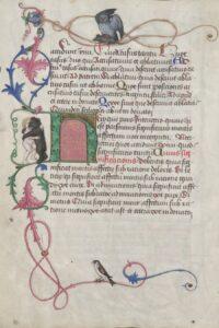 Randdekor mit Drolerien, Grammatik-Lehrbuch (Donat) für Maximilian I. (14591519) Handschrift Wien, um 1465/66. Bild: ÖNB
