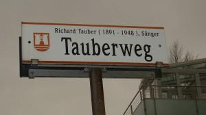 Die oberösterreichische Landeshauptstadt Linz gedachte ihrem großen Sohn mit dem Tauberwerg am Froschberg / Auf der Gugl. Foto: oepb