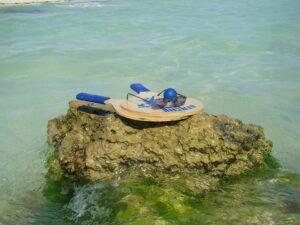 Bitte nicht stören, bin urlaubend am und im Meer. Foto: oepb