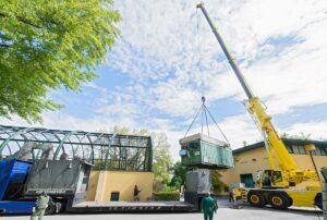 Tuluba wird für den Transport verladen. Foto: Daniel Zupanc