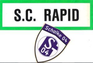 Das stolze SCHALKE 04 wurde von RAPID zu Fall gebracht. Collage: oepb