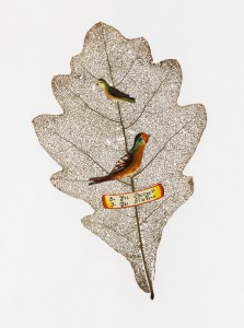 """Fundstück: Ein skelettiertes Eichenblatt, mit 2 Papiervögeln und einem Spruchband mit dem Text """"3 in Herzen, 3 in Sinn"""" (meint: Treu im Herzen, treu im Sinn). Foto: Österreichische Nationalbibliothek"""