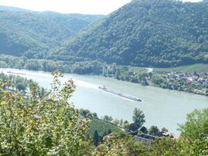 Blick von der Ruine Dürnstein in der Wachau auf den alten Donau-Strom der Nibelungen. Foto: oepb