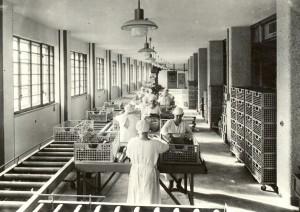 Befüllung von Feuchtkörben und Rollenbändern. Ein historisches Foto aus dem Jahre 1946. Foto: Tabakfabrik Linz