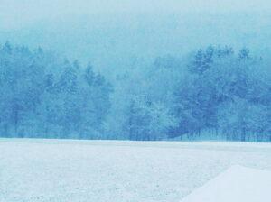 Prof. Hademar Bankhofer gibt einmal mehr wertvolle Tipps zum allgemeinen Wohlbefinden und zur strengen Winterzeit. Foto: oepb