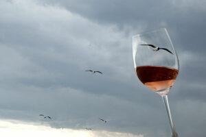 Auch 2018 stehen die Chancen für den österreichischen Wein sehr gut. Foto: ÖWM / Anna Stöcher