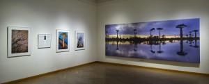 """Ausstellungsansicht """"BAOBAB. Der Zauberbaum. Fotografien von Pascal Maître. """" Foto: NHM Wien, Kurt Kracher"""