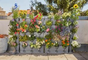Das Stecksystem NatureUp! von GARDENA lässt sich individuell in die Breite und Höhe erweitern. So können karge Ecken mit den Eckelementen bepflanzt werden. Foto: GARDENA