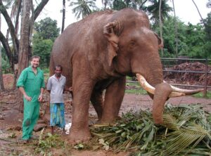 Harald Schwammer beim Elefanten-Projekt auf Sri Lanka. Foto: Archiv Schwammer