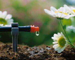 Das GARDENA Micro-Drip-System versorgt Topfpflanzen, Beete und Hecken durch stetiges Tröpfeln, leichtes Rieseln oder mit sanftem Sprühnebel gezielt und wassersparend. Foto: GARDENA