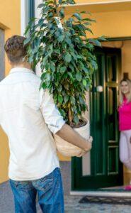 bellaflora bietet mit ihrer Zustellung bis in die Wohnung ein komfortables Service für die Kunden an. Foto: bellaflora