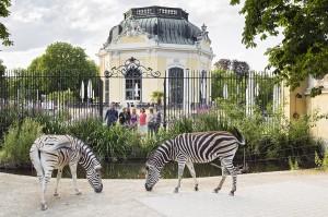 Ein Führungs-Bummel durch den Zoo lädt immer wieder zum Relaxen und Abschalten ein. Foto: Daniel Zupanc