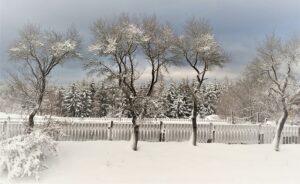 Selbst wenn es kalt ist draußen - ein Spaziergang in der Natur entschädigt oftmals für so vieles. Foto: oepb