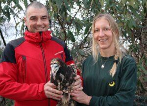 Tierpflegerin Regina Riegler übergibt Schmutzgeier Andi an Green Balkans. Foto: Tiergarten Schönbrunn/Barbara Feldmann