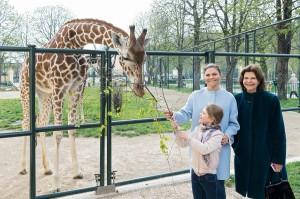 Im Bild von rechts: Königin Silvia von Schweden, Kronprinzessin Victoria und Prinzessin Estelle besuchten am 7. April 2019 den Wiener Tiergarten Schönbrunn und waren vom Ambiente, der Artenvielfalt und der Tierhaltung begeistert. Foto: Daniel Zupanc