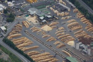 Die rasche Schadholzverwertung durch die Biomasse-Anlagen ist ein Gebot der Stunde. Foto: ÖBMV