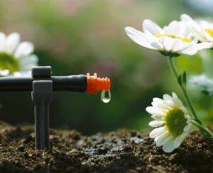 Das längste Hochbeet Wiens clever bewässert: GARDENA unterstützt die City Farm Augarten mit wassersparenden Bewässerungslösungen. Das GARDENA Micro-Drip-System bewässert punktgenau da, wo es die Pflanze am meisten benötigt: an der Wurzel. Foto: GARDENA