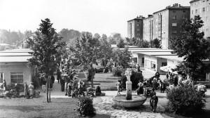 Blick auf den Linzer Südbahnhofmarkt in den 1950er Jahren. Foto: Stadt Linz