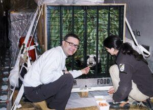 Thomas Voracek mit Zoologin Eveline Dungl beim Transport von Schönbrunns erstem Pandajungtier Fu Long nach China. Foto: Tiergarten Schönbrunn