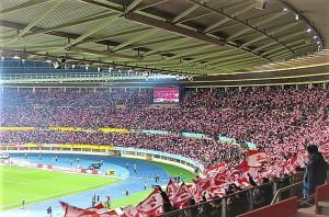 Bereits Tradition und für ein stimmungsvolles Stadion-Bild sorgend sind die x-tausend Stiegl-Fähnchen, die bei den ÖFB-Länderspielen geschwungen werden. Foto: oepb