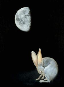 Gibbous Moon Hare. Foto: Dona Jalufka / NHM