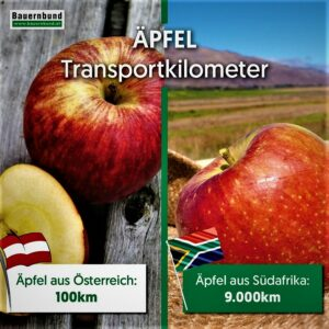 Äpfel reisen um die halbe Welt! Das beliebteste Obst der Österreicher konkurriert mit Äpfeln aus aller Welt – dieser Humbug muss sich ändern! Foto: Bauernbund