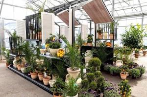 Die Inspirations-Quelle von bellaflora für den heimischen Balkon ...