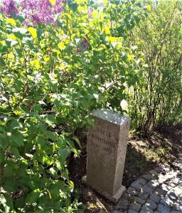 """Dort, wo vor 75 Jahren noch blutig gekämpft wurde, wuchert heute """"Mutter Natur"""" und steht mit ihrem satten Grün für immer wieder kehrendes Leben. Foto: © oepb"""