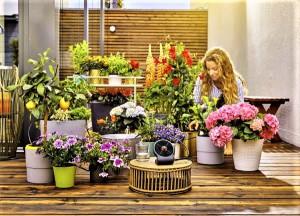 Pflanzen auf Balkon und Terrasse sind auch während des Urlaubs gut versorgt mit dem Gardena AquaBloom. Foto: © Gardena