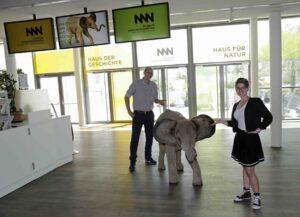 Ab 1. Juli 2020 hat auch das Museum Niederösterreich zu St. Pölten wieder seine Pforten geöffnet. Aber mit Abstand. Foto: Museum NÖ